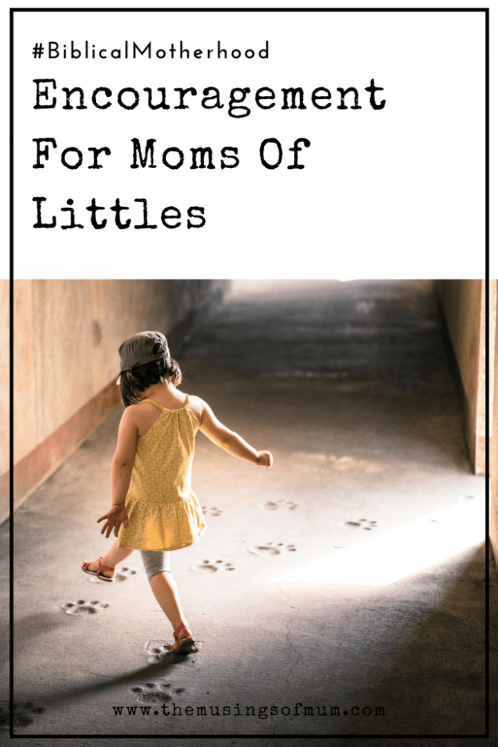 Encouragement For Moms Of Littles - Being a mom of little onesis not for the faint of heart, but be encouraged. Know you are not alone, the Creator of the universe is along side of you.